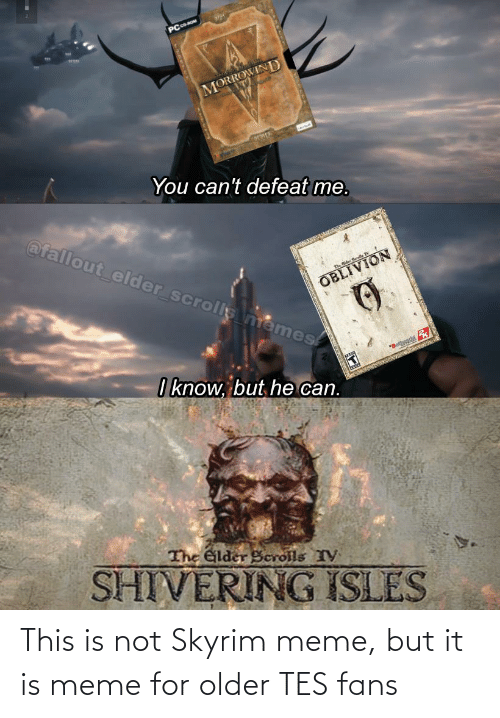 tes: This is not Skyrim meme, but it is meme for older TES fans