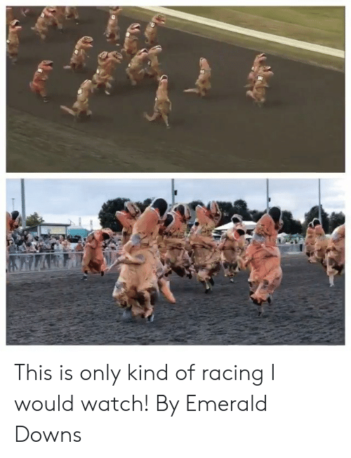 emerald: This is only kind of racing I would watch!  By Emerald Downs