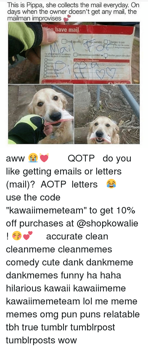 """Aww, Cute, and Dank: This is Pippa, she collects the mail everyday. On  days when the owner doesn't get any mail, the  mailman improvises  have mail  ganges to pay aww 😭💓 ༻❤︎༺ ❧ QOTP ➳ do you like getting emails or letters (mail)? ❧ AOTP ➳ letters 😂 ༻❤︎༺ use the code """"kawaiimemeteam"""" to get 10% off purchases at @shopkowalie ! 😚💕 ༻❤︎༺ accurate clean cleanmeme cleanmemes comedy cute dank dankmeme dankmemes funny ha haha hilarious kawaii kawaiimeme kawaiimemeteam lol me meme memes omg pun puns relatable tbh true tumblr tumblrpost tumblrposts wow"""