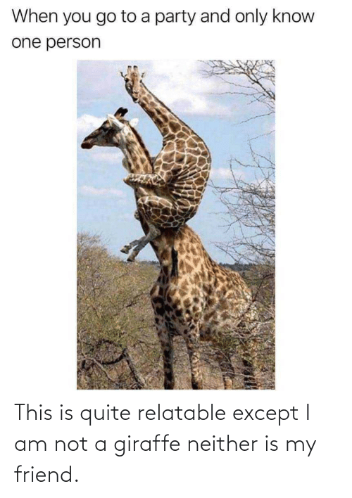 Giraffe: This is quite relatable except I am not a giraffe neither is my friend.