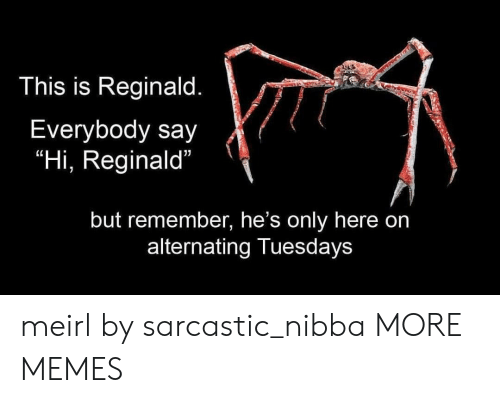 "sarcastic: This is Reginald.  Everybody say  ""Hi, Reginald""  but remember, he's only here on  alternating Tuesdays meirl by sarcastic_nibba MORE MEMES"