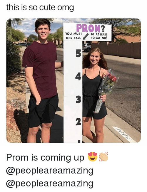 Cute, Memes, and Omg: this is so cute omg  PROM?  5  4  2  YOU MUST  THIS TALL  BE AT LEAST  TO SAY NO!  2 Prom is coming up 😍👏🏼 @peopleareamazing @peopleareamazing