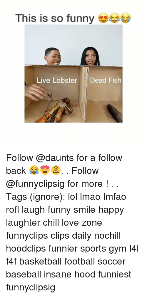 Rofled: This is so funny  Live Lobster Dead Fish Follow @daunts for a follow back 😂😍😩. . Follow @funnyclipsig for more ! . . Tags (ignore): lol lmao lmfao rofl laugh funny smile happy laughter chill love zone funnyclips clips daily nochill hoodclips funnier sports gym l4l f4f basketball football soccer baseball insane hood funniest funnyclipsig