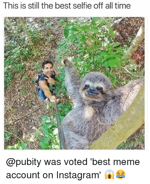 Instagram, Meme, and Memes: This is still the best selfie off all time @pubity was voted 'best meme account on Instagram' 😱😂