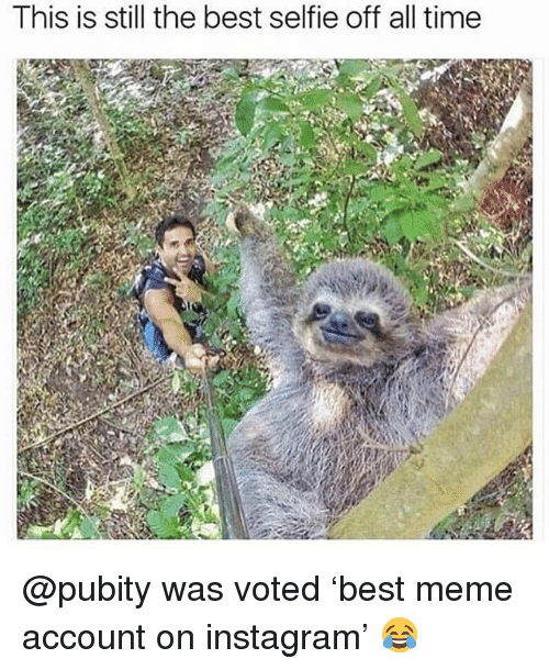 Funny, Instagram, and Meme: This is still the best selfie off all time @pubity was voted 'best meme account on instagram' 😂