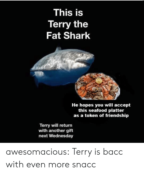 seafood: This is  Terry the  Fat Shark  He hopes you will accept  this seafood platter  as a token of friendship  Terry will return  with another gift  next Wednesday awesomacious:  Terry is bacc with even more snacc