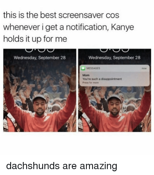 Kanye, Memes, and Best: this is the best screensaver cos  whenever i get a notification, Kanye  holds it up for me  Wednesday, September 28  Wednesday, September 28  MESSAGES  You're such a disappointment  Press for more dachshunds are amazing
