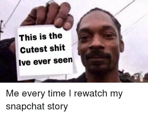 Funny, Shit, and Snapchat: This is the  Cutest shit  Ive ever seen Me every time I rewatch my snapchat story
