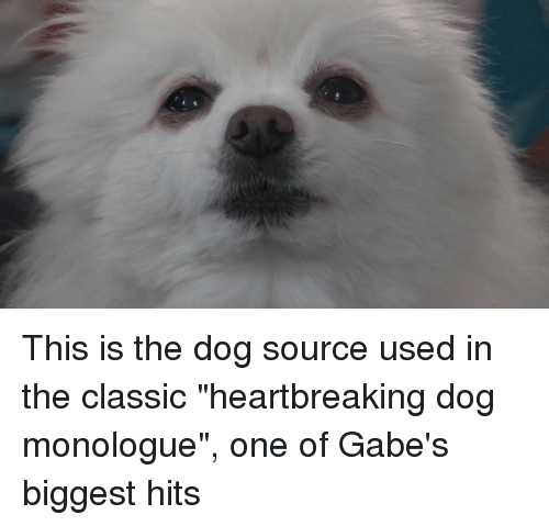 "Gabe: This is the dog source used in the classic ""heartbreaking dog monologue"", one of Gabe's biggest hits"