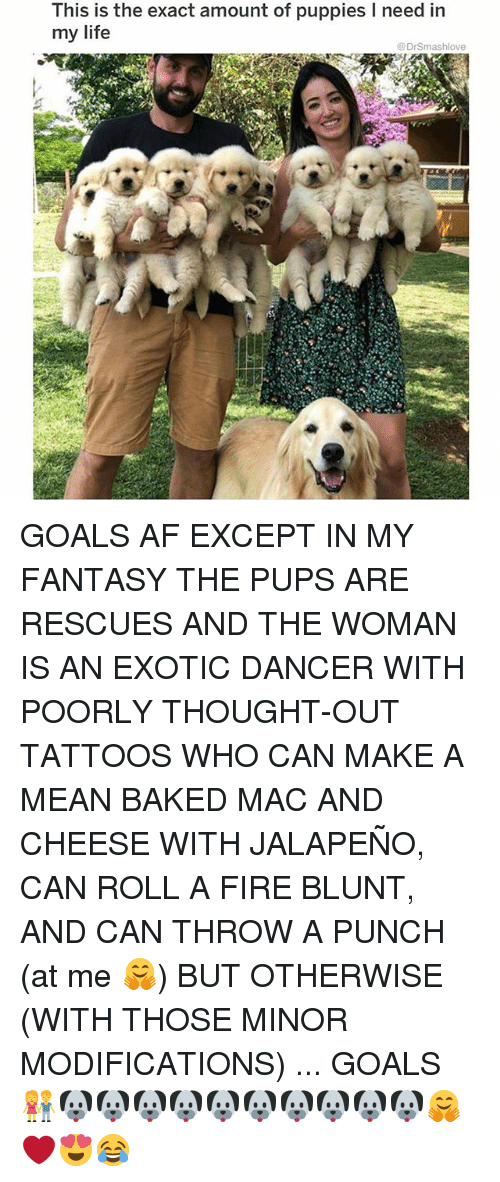 Af, Baked, and Fire: This is the exact amount of puppies I need in  my life  @DrSmashlove GOALS AF EXCEPT IN MY FANTASY THE PUPS ARE RESCUES AND THE WOMAN IS AN EXOTIC DANCER WITH POORLY THOUGHT-OUT TATTOOS WHO CAN MAKE A MEAN BAKED MAC AND CHEESE WITH JALAPEÑO, CAN ROLL A FIRE BLUNT, AND CAN THROW A PUNCH (at me 🤗) BUT OTHERWISE (WITH THOSE MINOR MODIFICATIONS) ... GOALS 👫🐶🐶🐶🐶🐶🐶🐶🐶🐶🐶🤗❤️😍😂