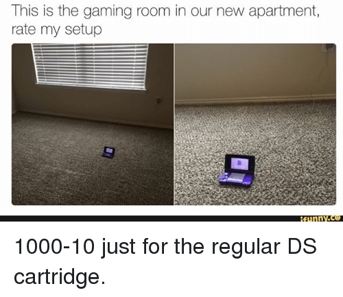 cartridge: This is the gaming room in our new apartment,  rate my setup  funnY 1000-10 just for the regular DS cartridge.