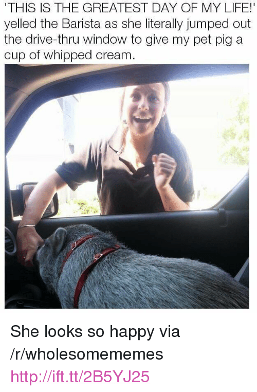 "Life, Drive, and Happy: THIS IS THE GREATEST DAY OF MY LIFE!  yelled the Barista as she literally jumped out  the drive-thru window to give my pet pig a  cup of whipped cream <p>She looks so happy via /r/wholesomememes <a href=""http://ift.tt/2B5YJ25"">http://ift.tt/2B5YJ25</a></p>"
