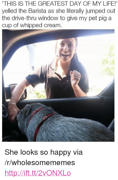"Life, Drive, and Happy: THIS IS THE GREATEST DAY OF MY LIFE!  yelled the Barista as she literally jumped out  the drive-thru window to give my pet pig a  cup of whipped cream <p>She looks so happy via /r/wholesomememes <a href=""http://ift.tt/2vONXLo"">http://ift.tt/2vONXLo</a></p>"