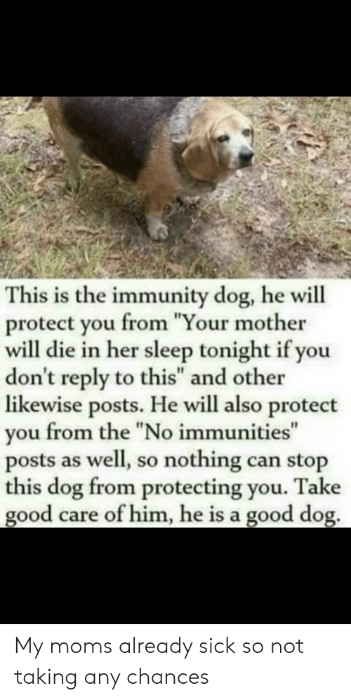 "Protect You: This is the immunity dog, he will  protect you from ""Your mother  will die in her sleep tonight if you  don't reply to this"" and other  likewise posts. He will also protect  you from the ""No immunities""  posts as well, so nothing can stop  this dog from protecting you. Take  good care of him, he is a good dog. My moms already sick so not taking any chances"