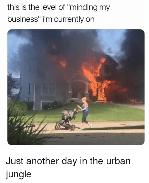 "Dank, Business, and Urban: this is the level of ""minding my  business"" i'm currently on Just another day in the urban jungle"