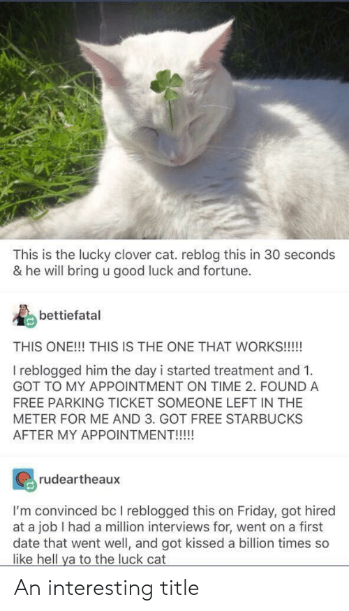 clover: This is the lucky clover cat. reblog this in 30 seconds  & he will bring u good luck and fortune.  bettiefatal  THIS ONE!!! THIS IS THE ONE THAT WORKS!!!  I reblogged him the day i started treatment and 1.  GOT TO MY APPOINTMENT ON TIME 2. FOUND A  FREE PARKING TICKET SOMEONE LEFT IN THE  METER FOR ME AND 3. GOT FREE STARBUCKS  rudeartheaux  I'm convinced bc I reblogged this on Friday, got hired  at a job I had a million interviews for, went on a first  date that went well, and got kissed a billion times so  like hell ya to the luck cat An interesting title