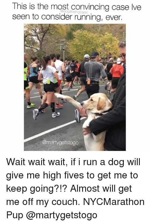 Memes, Run, and Couch: This is the most convincing case lve  seen to consider running, ever.  @martygetstogo Wait wait wait, if i run a dog will give me high fives to get me to keep going?!? Almost will get me off my couch. NYCMarathon Pup @martygetstogo