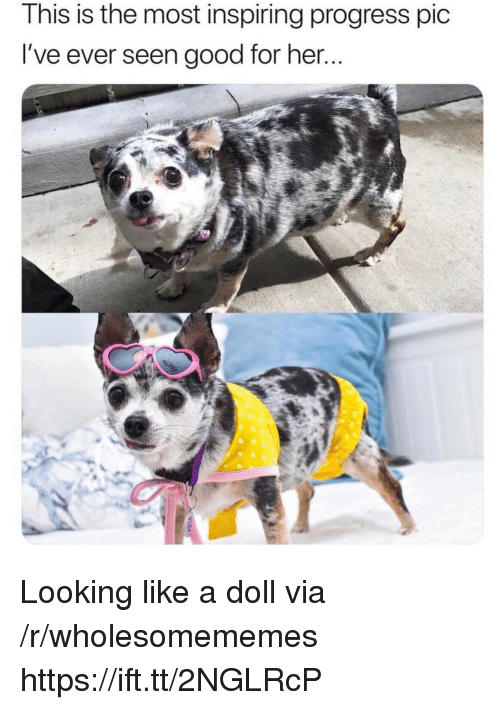 Good, Her, and Looking: This is the most inspiring progress pic  I've ever seen good for her Looking like a doll via /r/wholesomememes https://ift.tt/2NGLRcP