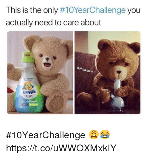 Actually Need: This is the only #10YearChallenge you  actually need to care about  @HitsBlunt  Snuggle  PLUS  Fresh #10YearChallenge 😩😂 https://t.co/uWWOXMxkIY