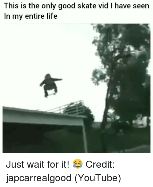 Life, Memes, and youtube.com: This is the only good skate vid I have seen  In my entire life Just wait for it! 😂 Credit: japcarrealgood (YouTube)