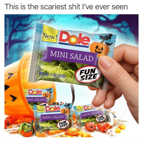 New New: This is the scariest shit l've ever seen  New!  MINI SALAD  50FUN  MINI SALAD  New!  New  MINI SALAD  MINI SALAD  FUN