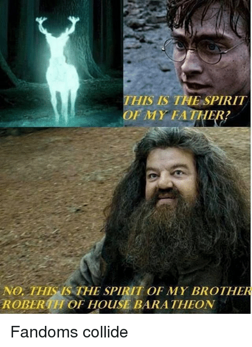 Memes, House, and Spirit: THIS IS THE SPIRIT  OF MY FATHER!  NO  THIS THE SPIRIT OF MY BROTHER  ROBER  OF HOUSE BARA THEON Fandoms collide