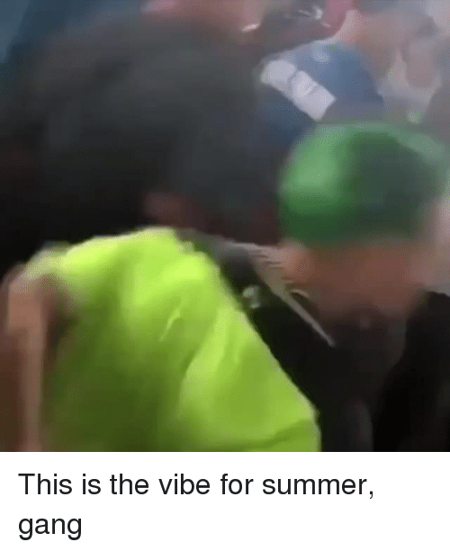 The Vibe: This is the vibe for summer, gang
