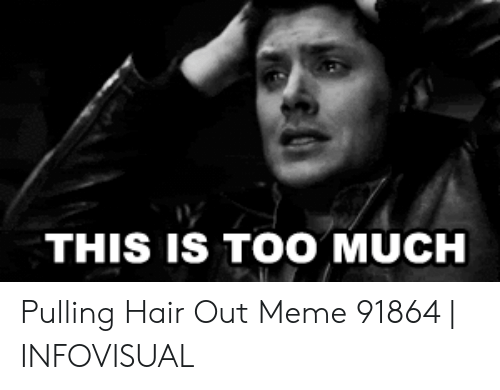 Pulling Hair Out Meme: THIS IS TOO MUCH Pulling Hair Out Meme 91864   INFOVISUAL