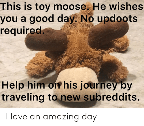 moose: This is toy moose. He wishes  you a good day. No updoots  required.  Help him on his journey by  traveling to new subreddits. Have an amazing day