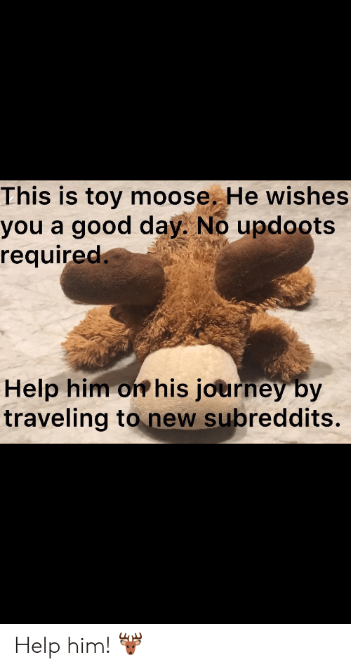 moose: This is toy moose. He wishes  you a good day. No updoots  required.  Help him on his journey by  traveling to new subreddits. Help him! 🦌