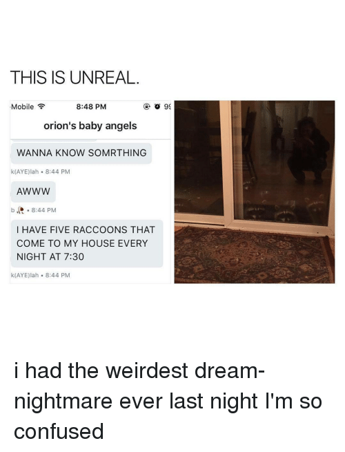 Confused, My House, and Mobile: THIS IS UNREAL  Mobile  8:48 PM  o 99  orion's baby angels  WANNA KNOW SOMR THING  k (AYE) lah 8:44 PM  AWWW  b 8:44 PM  I HAVE FIVE RACCOONS THAT  COME TO MY HOUSE EVERY  NIGHT AT 7:30  k(AYE) lah 8:44 PM i had the weirdest dream-nightmare ever last night I'm so confused