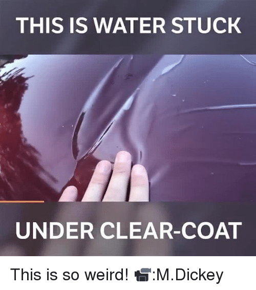 Memes, Weird, and Water: THIS IS WATER STUCK  UNDER CLEAR-COAT This is so weird! 📹:M.Dickey