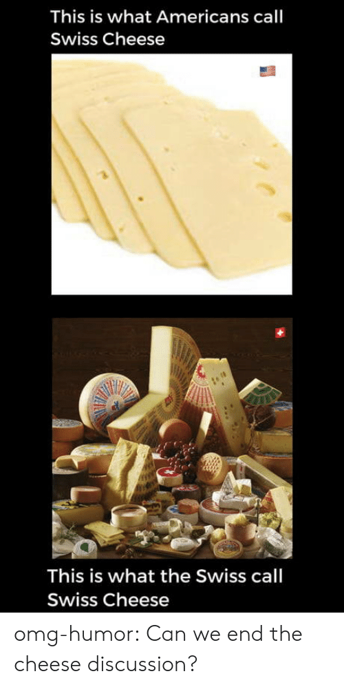 Omg, Tumblr, and Blog: This is what Americans call  Swiss Cheese  This is what the Swiss call  Swiss Cheese omg-humor:  Can we end the cheese discussion?