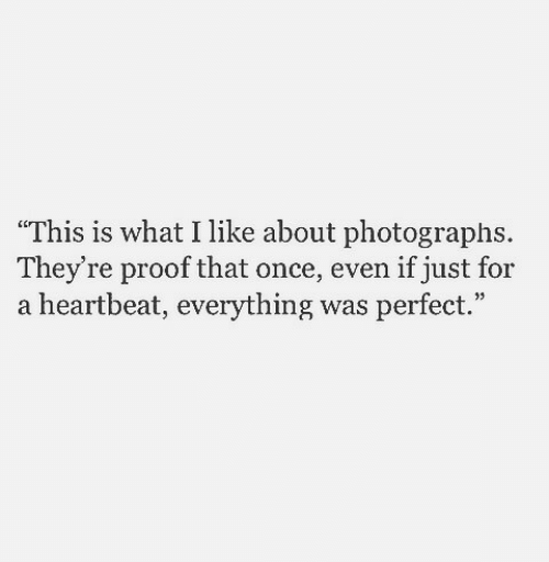 """heartbeat: """"This is what I like about photographs  They're proof that once, even if just for  a heartbeat, everything was perfect."""""""