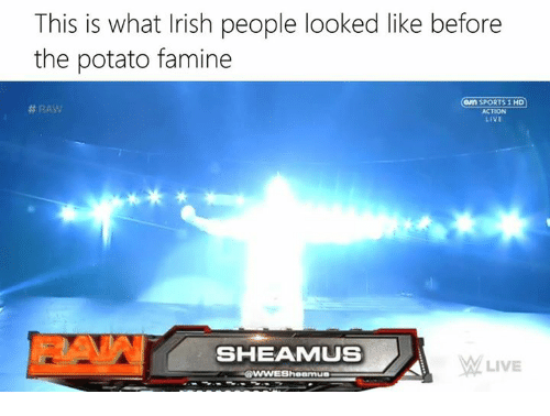 Irish, Potato, and Dank Memes: This is what Irish people looked like before  the potato famine  an SPORTS 1 HD  ACTION  LIVE  SHEAMMUS  MM LIVE  Shearmua