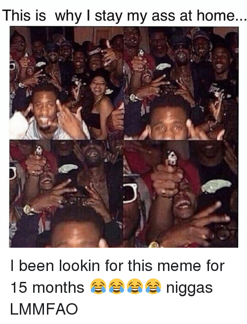 meme: This is why I stay my ass at home.. I been lookin for this meme for 15 months 😂😂😂😂 niggas LMMFAO