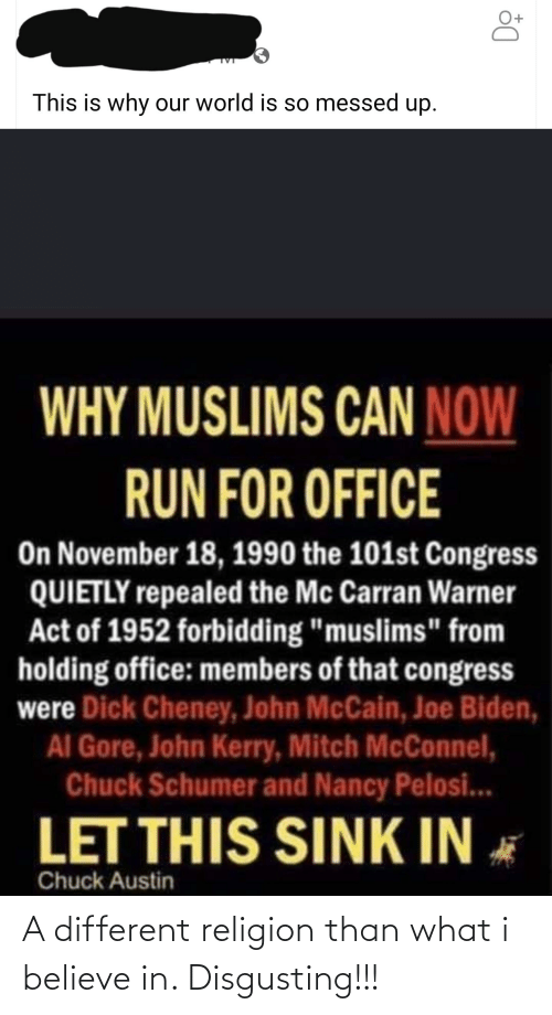 """John McCain: This is why our world is so messed up.  WHY MUSLIMS CAN NOW  RUN FOR OFFICE  On November 18, 1990 the 101st Congress  QUIETLY repealed the Mc Carran Warner  Act of 1952 forbidding """"muslims"""" from  holding office: members of that congress  were Dick Cheney, John McCain, Joe Biden,  AI Gore, John Kerry, Mitch McConnel,  Chuck Schumer and Nancy Pelosi...  LET THIS SINK IN  Chuck Austin A different religion than what i believe in. Disgusting!!!"""