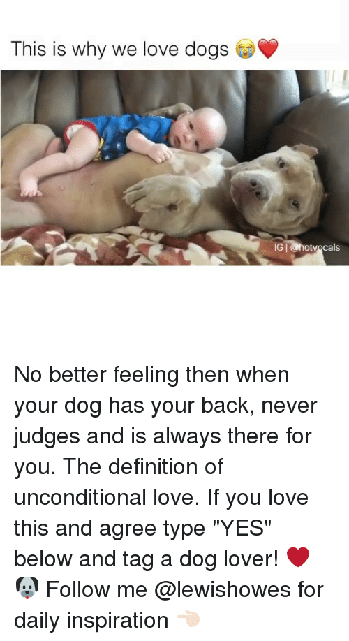 "dog lovers: This is why we love dogs  G ot Vocals No better feeling then when your dog has your back, never judges and is always there for you. The definition of unconditional love. If you love this and agree type ""YES"" below and tag a dog lover! ❤️🐶 Follow me @lewishowes for daily inspiration 👈🏻"