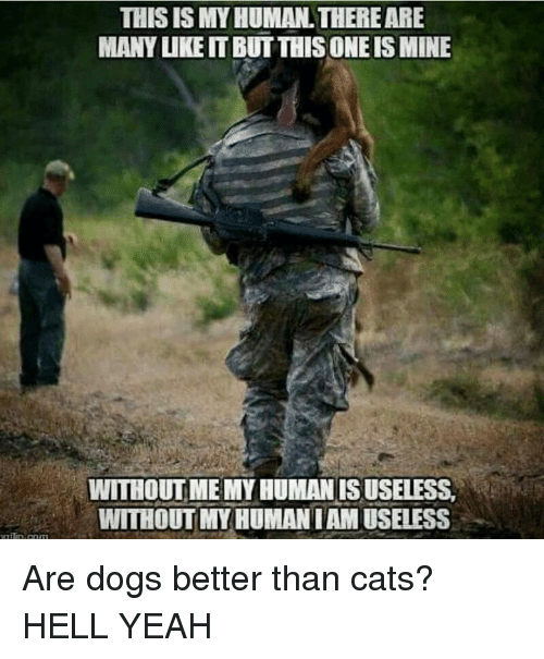 Cats, Memes, and Yeah: THIS ISMY HUMAN THERE ARE  MANY UKEITBUT THIS ONE IS MINE  WITHOUT MEMYHUMANISUSELESS.  WITHOUT MY HUMANIAMUSELESS Are dogs better than cats?  HELL YEAH