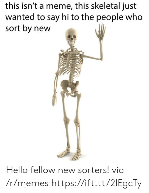 skeletal: this isn't a meme, this skeletal just  wanted to say hi to the people who  sort by new Hello fellow new sorters! via /r/memes https://ift.tt/2IEgcTy
