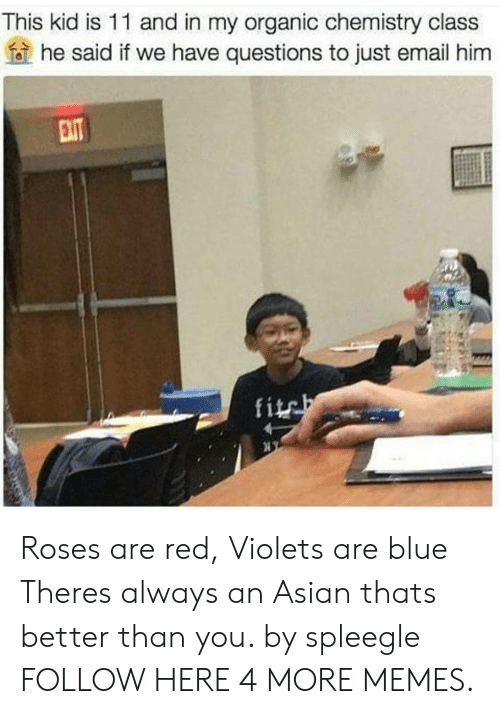 Fite: This kid is 11 and in my organic chemistry class  he said if we have questions to just email him  fite Roses are red, Violets are blue Theres always an Asian thats better than you. by spleegle FOLLOW HERE 4 MORE MEMES.