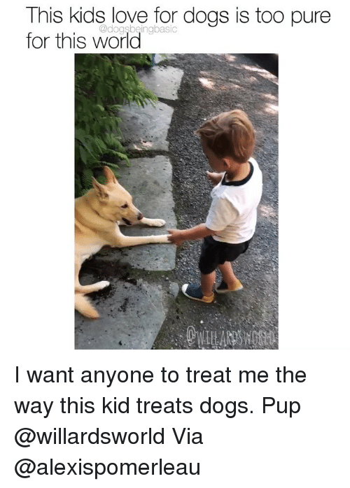 Too Pure: This kids love for dogs is too pure  for this world  @dogsbeingbasic I want anyone to treat me the way this kid treats dogs. Pup @willardsworld Via @alexispomerleau