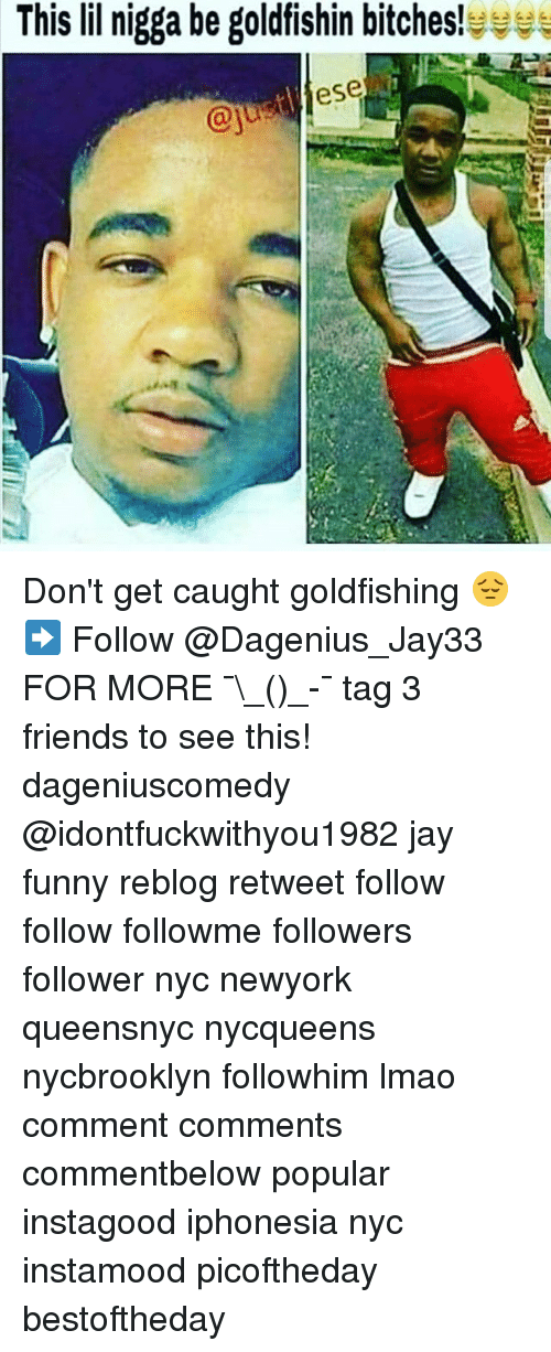 Friends, Funny, and Jay: This lil nigga be goldfishin bitches! Don't get caught goldfishing 😔➡️ Follow @Dagenius_Jay33 FOR MORE ¯\_(ツ)_-¯ tag 3 friends to see this! dageniuscomedy @idontfuckwithyou1982 jay funny reblog retweet follow follow followme followers follower nyc newyork queensnyc nycqueens nycbrooklyn followhim lmao comment comments commentbelow popular instagood iphonesia nyc instamood picoftheday bestoftheday