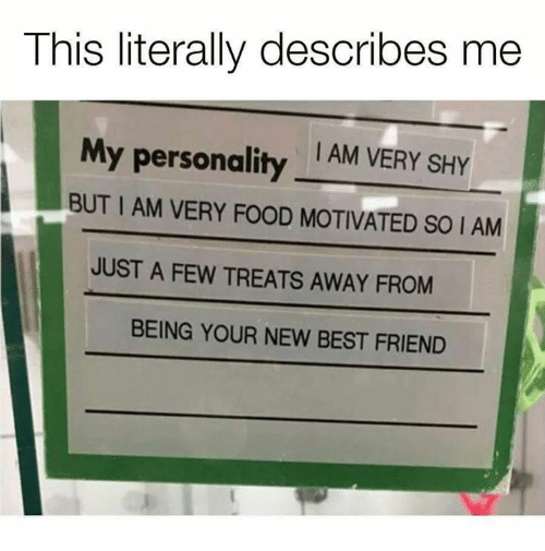 Best Friend, Food, and Funny: This literally describes me  My personality  I AM VERY SHY  BUT I AM VERY FOOD MOTIVATED SO I AM  JUST A FEW TREATS AWAY FROM  BEING YOUR NEW BEST FRIEND