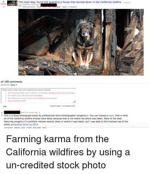 dont feed the trolls: -This loyal dog found still guarding a house that burned down in the California wildfire  u  i.redd.it)  5733  submitted 4 hours ago  189 comments share save ue  gold report crosspost  all 189 comments  sorted by: best  These aren't rules, but we'd appreciate it if you please:  1. don't harass/bully other redditors (remember: karma points mean nothing)  2. be skeptical, but still civil and respectful.  3. don't misrepresent our rules (see complete list in sidebar)  4. don't feed the trolls  save  content policy formatting help  idden] 23 minutes ago  You  This is a stock photograph taken by professional stock photographer yevgeniy11. You can license it here. That is what  all of the California wildfire articles have done, because that is not where the photo was taken. None of the sites  featuring yevgeniy11's portfolio indicate exactly when or where it was taken, but I was able to find licensed use of the  photo going back as far as 2014.  permalink embed save report give gold reply  have done,  featuring yevgenir