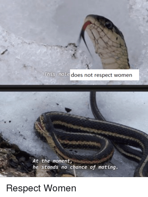 Reddit, Respect, and Women: This male  At the moment,  he stands no chance of mating.