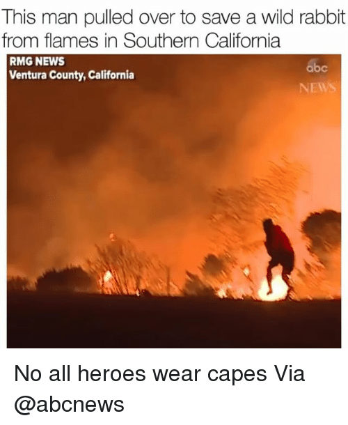 Abc, Funny, and News: This man pulled over to save a wild rabbit  from flames in Southern California  RMG NEWS  Ventura County, California  abc  NEWS No all heroes wear capes Via @abcnews
