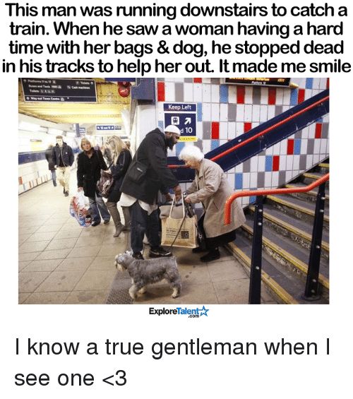 True Gentleman: This man was running downstairs to catch a  train. When he sawa woman having a hard  time with her bags & dog, he stopped dead  in his tracks to help her out. It made me smile  Keep Left  d 10  Talent A  Explore I know a true gentleman when I see one <3