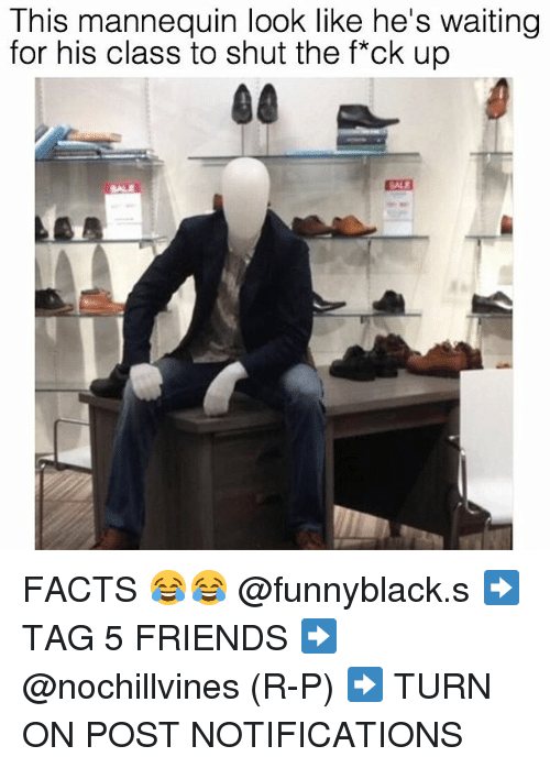 Facts, Friends, and Dank Memes: This mannequin look like he's waiting  for his class to shut the f*ck up  SALE FACTS 😂😂 @funnyblack.s ➡️ TAG 5 FRIENDS ➡️ @nochillvines (R-P) ➡️ TURN ON POST NOTIFICATIONS