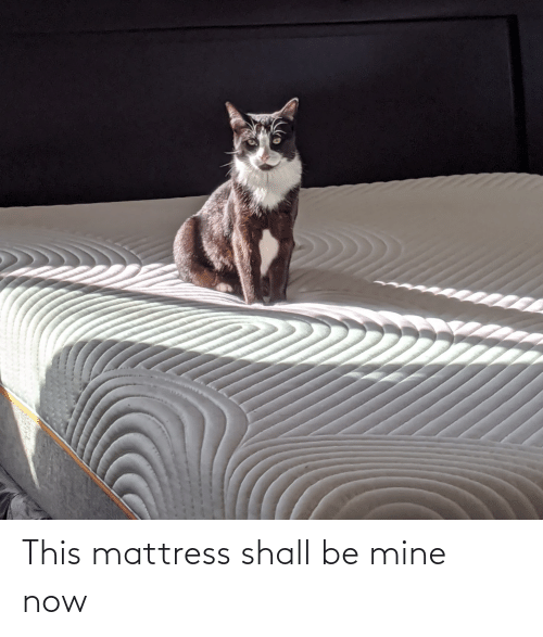 Mine Now: This mattress shall be mine now